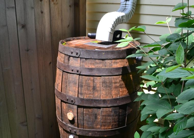 Rain Barrels backyard Gardens
